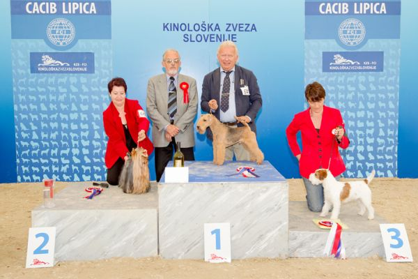 FCI group III - Winners of the International Dog Show CACIB Lipica I (Slovenia), Saturday, 3 October 2015