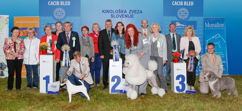 Best in Show (BIS) - BIS CACIB Bled I (Slovenia), Saturday, 11 June 2016 (photo)