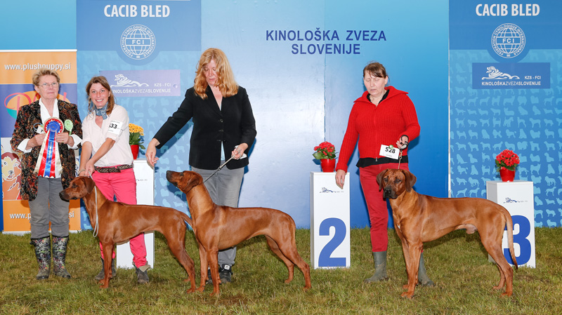 Best Breeder's Group - BIS CACIB Bled II (Slovenia), Sunday, 12 June 2016 (photo)