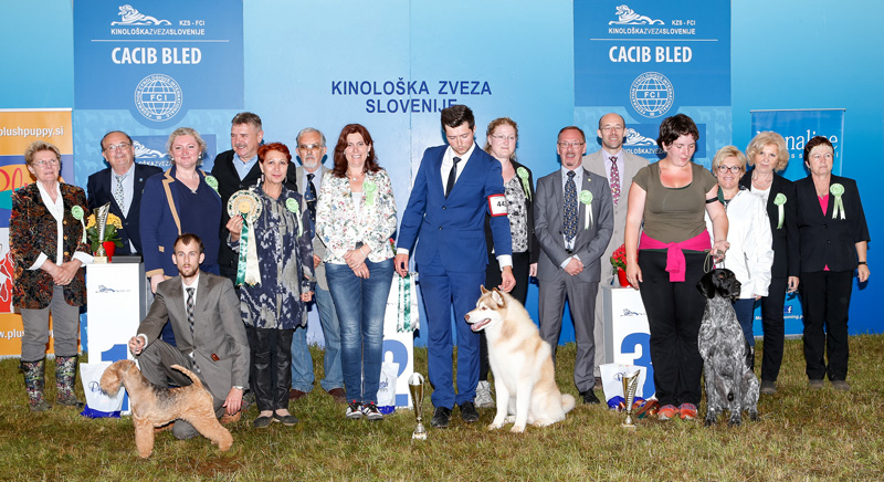 Best in Show (BIS) - BIS CACIB Bled II (Slovenia), Sunday, 12 June 2016 (photo)