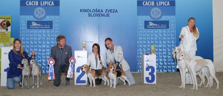 Лучшая пара - BIS IDS Липица (Словения), суббота, 8 октября 2016 года