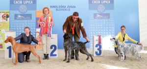 caciblipica2016dan2-19