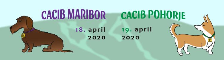 Pasica-cacib-2020-01